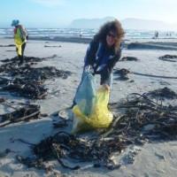 Beach Clean-up & MMM1-Dec14