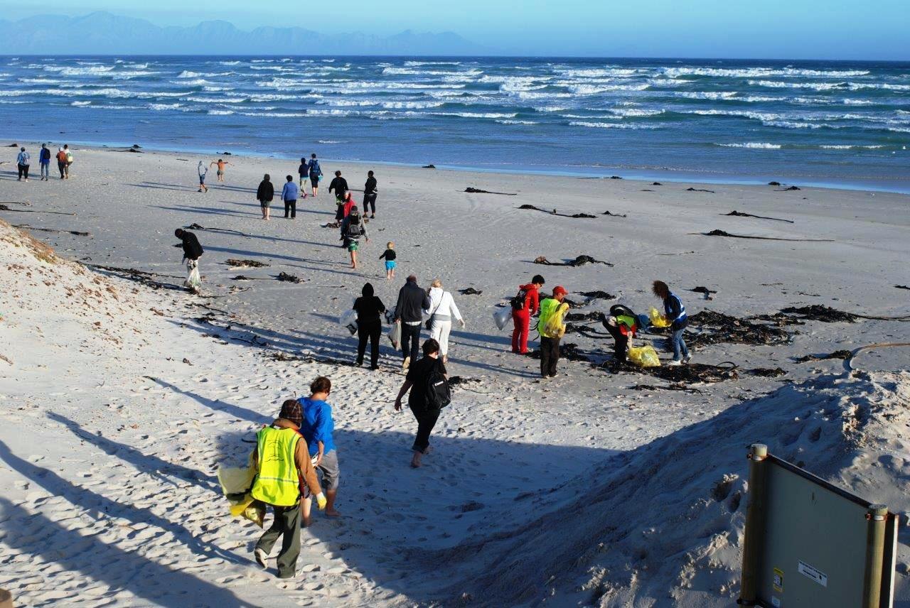 Beach Clean-up & MMM5 -Dec14